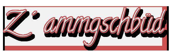 Z´ ammgschbüd